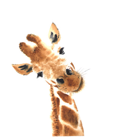 Artistic watercolor giraffe. Close-up. 矢量图像