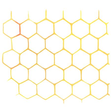 Aquarell Honeycomb auf weißem Standard-Bild - 74476117