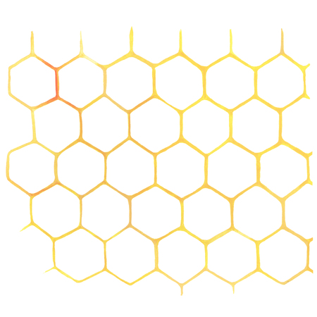 Watercolor Honeycomb on white Imagens - 74476117