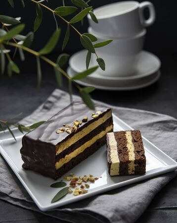 delicious chocolate mozart cake with pistachious on square plate morning light  window