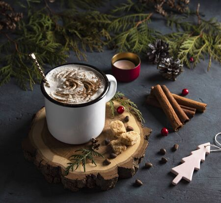 cup of sweet cacao with cinammon and brown sugar christmas  tree cozy wood background new year mood Reklamní fotografie