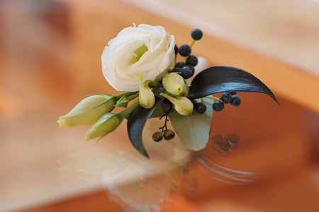 Rose bud in tenderless boutonniere, closeup