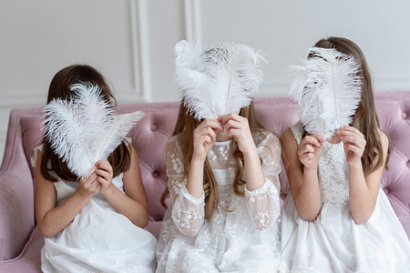Big white feathers instead faces of girls in hands 스톡 콘텐츠