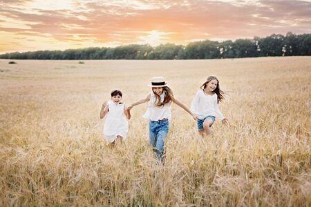Group of three smiling girls running in the wheat field at sunset 스톡 콘텐츠