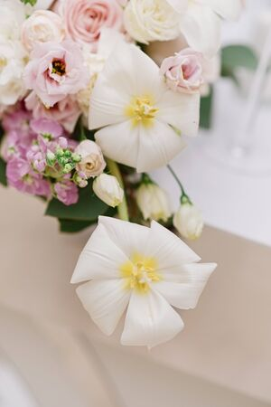 Gentle fresh flowers with a subtle flavor decorate the wedding table. White original flowers with twisted petals