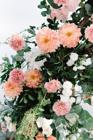 Beautiful wedding background of fresh flowers and greenery. Wedding decorations with flowers. Peach georgines, white roses and gentle cloves decorate wedding arch