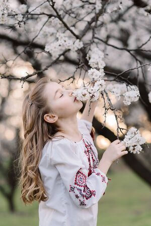 Portrait of beautiful girl with curly long hair. Beautiful girl in Ukrainian embroidered smells apricot blossom tree branch. Spring concept