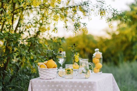 Lemonade and olive palm on table. Mason jar glass of lemonade with lemons. Copy space. Fruits and yellow macaroons on the table. The concept of spring and summer season. Healthy Food and Drink