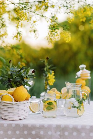Lemonade and olive palm on table. Mason jar glass of lemonade with lemons. Copy space. Fruits and macaroons on the table. The concept of spring and summer season. Healthy Food and Drink