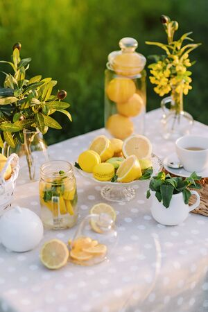 Lemons and yellow macaroons on the table sunset light. Copy space. The concept of spring and summer season. Healthy Food and Drink. Italian or spanish picnic decoration.