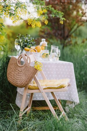 Picnic at the park. Fresh fruits and lemon tarts, straw bag with yellow wisteria on the italian dots tablecloth 스톡 콘텐츠