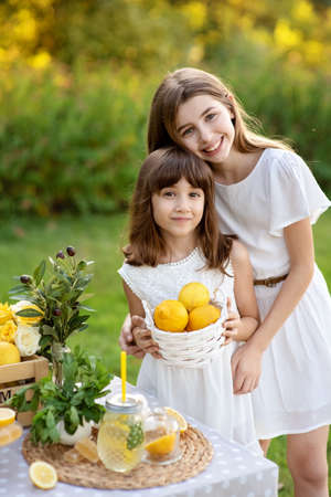 Two cute happy girls selling lemonade in park. Homemade lemonade sale concept. Lemons, mint, cocktail cans in boxes for lemonade close-up. Homemade lemonade in dispenser and copy space. 스톡 콘텐츠