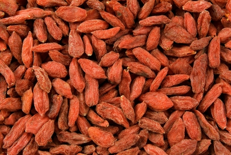 Red dried tibetan goji berries, Lycium tibetan, tonic herb with a history of almost 2,000 years of medicinal use photo