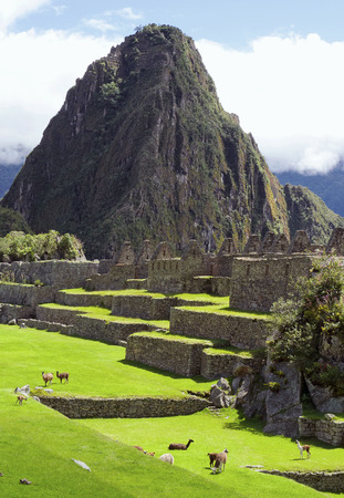 Machu Picchu  Peru, Southa America
