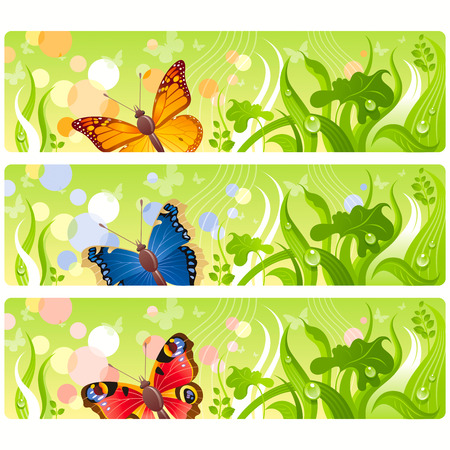 peacock butterfly: Butterflies in grass banners Illustration