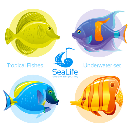 sea life centre: Icon set with tropical fishes - surgeonfish, angelfish and butterflyfish