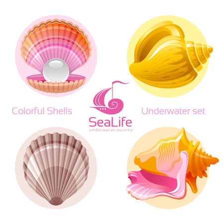sea life centre: Icon set with tropical colorful shells and logo