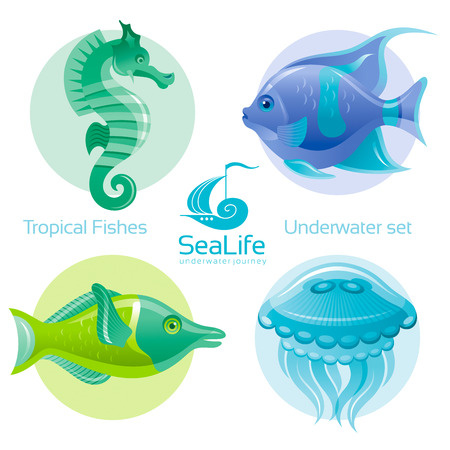 sea life centre: Icon set with tropical fishes - butterfly fish, clown fish and squirell fish