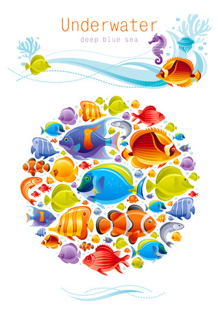 underwater fishes: Sea summer travel poster design with tropical seafood fishes icon set and sailing adventure signs. Vector illustration on white background with wave and text lettering Underwater Illustration