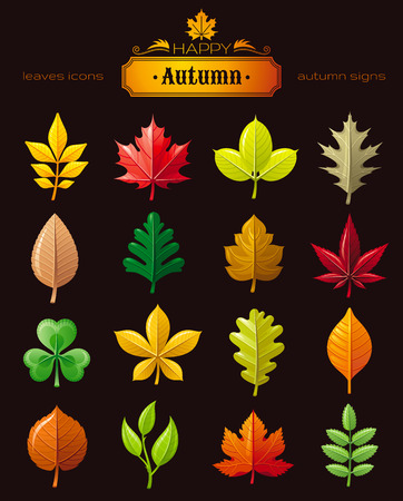 linden: Leaves vector icon set for natural, seasonal, ecological design concept. Abstract autumn leaf symbol - chestnut, oak, maple, hawthorn, maple, rowan, linden, ash, cherry, clover, sprout, grape leaf
