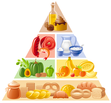 健康な食べることと食事 - 穀物、全粒穀物、パン、果物、野菜、牛乳、ヨーグルト、肉、魚の 4 つのレベルで食糧ガイドのピラミッド インフォ グラ  イラスト・ベクター素材