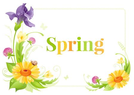 Flower Frame Isolated White Background. Spring Summer Nature ...