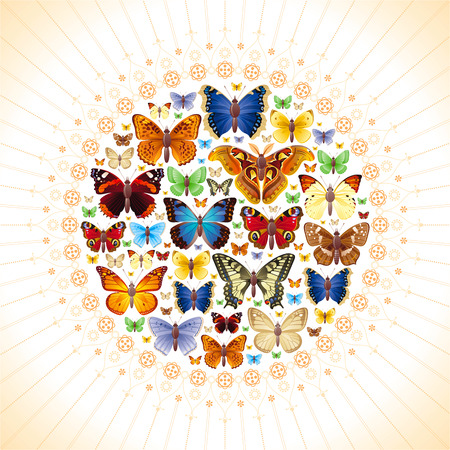Vector illustration of insects icons set. Abstract modern concept with mandala ornament and natural symbols - atlas moth, peacock, admiral, swallowtail butterflies. Template animal collection