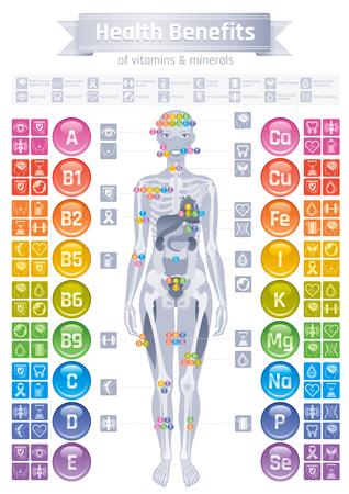 Ikony witamin mineralnych. Korzyści dla zdrowia płaski zestaw ikon wektorowych tekst logo litery samodzielnie białym tle. Tabela ilustracji medycyna opieki zdrowotnej wykresu. Schemat infografiki medycznego. Ciało ludzkie eps Logo