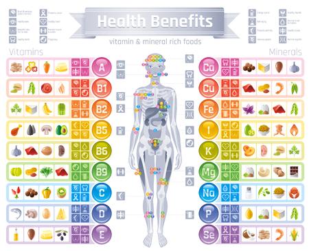 Mineral Vitamin Ergänzung Symbole. Gesundheit Nutzen flache Vektor Icon-Set, Text Brief Logo isoliert weißen Hintergrund. Tabelle Abbildung Medizin Gesundheitswesen Diagramm Diät Gleichgewicht medizinische Infografik Diagramm Logo