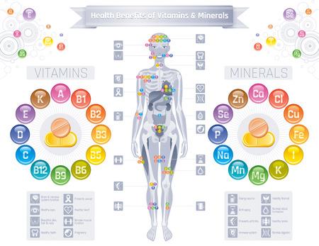 Mineral Vitamin Ergänzung Symbole. Gesundheit Nutzen flache Vektor Icon-Set, Text Brief Logo isoliert weißen Hintergrund. Tabelle Abbildung Medizin Gesundheitswesen Diagramm Diät Gleichgewicht medizinische Infografik Diagramm