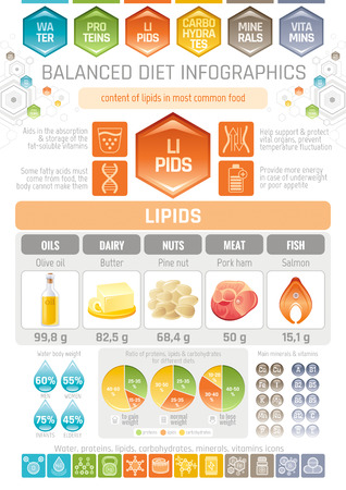 lipids: Fat lipids diet infographic diagram poster. Water protein lipid carbohydrate mineral vitamin flat icon set. Table vector illustration human health care, medicine chart. Food Isolated white background