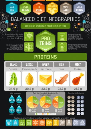 Proteins diet infographic diagram poster. Water protein lipid carbohydrate mineral vitamin flat icon set. Table vector illustration human health care, medicine chart. Food Isolated black background  イラスト・ベクター素材