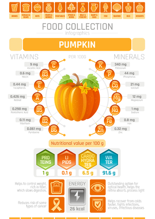 Food infographics poster, pumpkin vegetable vector illustration. Healthy eating icon set, diet design elements, vitamin mineral supplement chart, protein, lipid, carbohydrates, diagram flat flyer.
