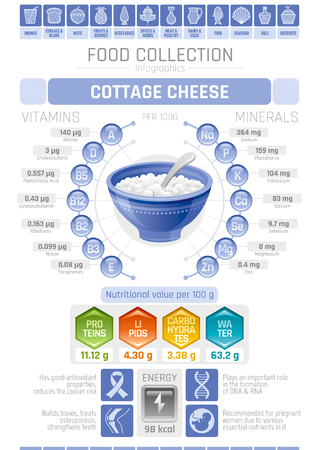 Food infographics poster, cottage cheese dairy vector illustration. Healthy eating icon set, diet design elements, vitamin mineral supplement chart, protein, lipid, carbohydrates, diagram flat flyer. Ilustração