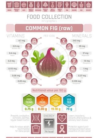 음식 infographics 포스터, 무화과 열매 벡터 일러스트 레이 션. 건강한 먹는 아이콘 세트, 다이어트 디자인 요소, 비타민 미네랄 보충 차트, 단백질, 지질,