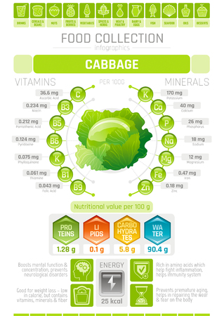 Food infographics poster, cabbage vegetable vector illustration. Healthy eating icon set, diet design elements, vitamin mineral supplement chart, protein, lipid, carbohydrates, diagram flat flyer.