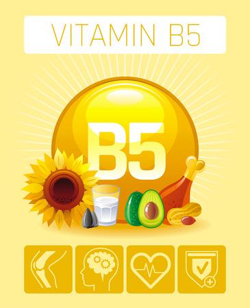 Pantothenic acid Vitamin B5 rich food Infographic poster