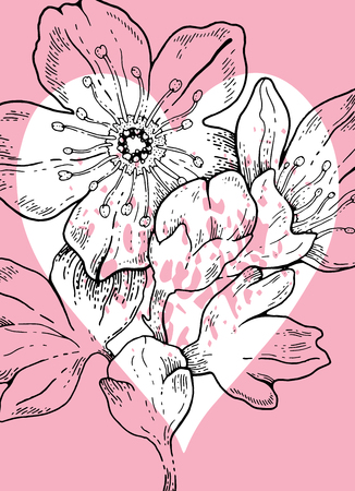 Hand drawn sakura cherry flowers whith heart background for Valentine s day gift tag, Wedding invitation, Mothers day greeting card, Birthday card. Elegant engraving style, vector illustration