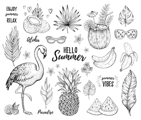 Summer tropic sticker set. Flamingo, cocktail, jungle palm leaf, exotic fruit. Hand drawn vintage art. Cool doodle pineapple, watermelon, coco drink, banana. Cute vector illustration, white background