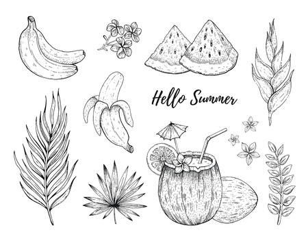 Hello Summer tropic fruit and flower stickers. Banana, coconut cocktail, watermelon, Frangipani, Heliconia palulu. Hand drawn vintage art. Cool doodle vector illustration, icon set on white background Illustration