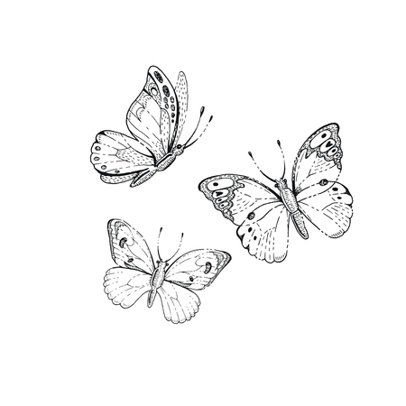 Spring, summer butterfly art. For tattoo, coloring book, t-shirt print, wadding invitation, mother s day card. Line sketch, floral illustration. Hand drawn vector silhouette graphic isolated on white Ilustração