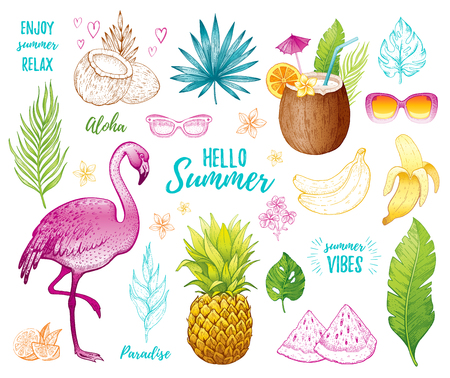 Summer tropic sticker set for t-shirt print, logo design, print, ca. Vector flamingo, palm leaf, exotic fruit. Hand drawn vintage art. Cool doodle pineapple, watermelon, banana. White background