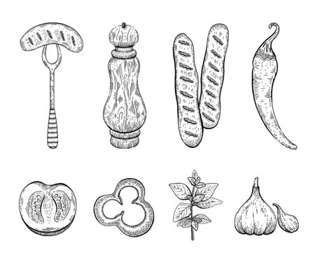 Sausage spices engraved sketch icon set. Sausage on fork, pepper mill, bratwurst, chilli pepper, tomato, paprika, oregano, garlic. Ink outline food vector illustration isolated on white background. Stock Illustratie