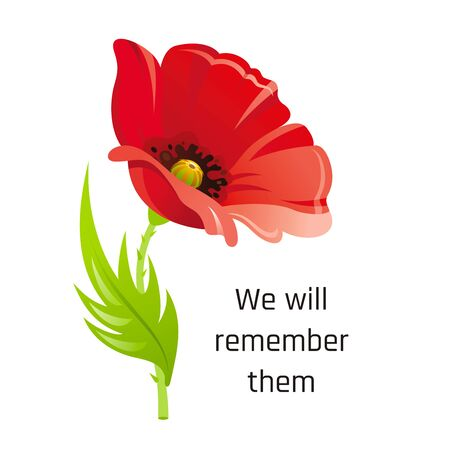 Realistic red poppy flower symbol, 3d remembrance day November 11 poster with We will remember them text. Flat anniversary memory banner.