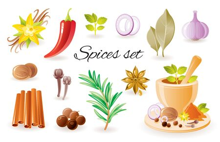 Spice herb icon set with garlic, cinnamon, chilli papper, bay leaf, vanilla flower, rosemary, mint, anise. 3d color glossy vector illustrations isolated on white. Seasoning organic food design