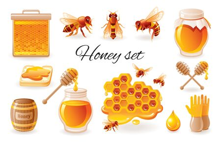 Honey beekeep icon set with honeycomb, honeybee - bee insects, honey jar, drop, syrup toast. Realistic 3d color glossy vector illustrations isolated on white background. Organic food design concept