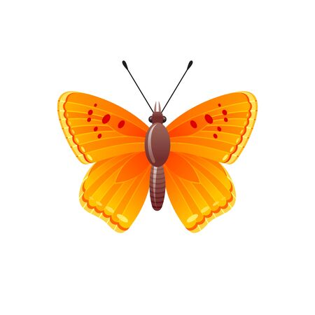 Butterfly icon. 3d realistic butterfly insect with beautiful orange yellow color wings. Animal sign for logo design, poster, t-shirt print, banner. Vector illustration isolated on white background Ilustracja