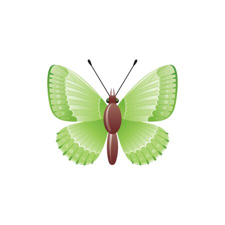 Green spring butertly realistic 3d icon. Cute cartoon moth, natural symbol. vector illustration isolated on white background Illusztráció