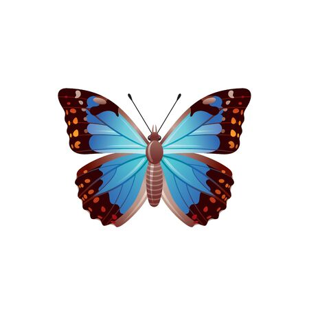 Butterfly icon. 3d realistic Morpho azure butterfly insect with beautiful blue wings. Animal sign for logo design, poster, t-shirt print, banner. Vector illustration isolated on white background