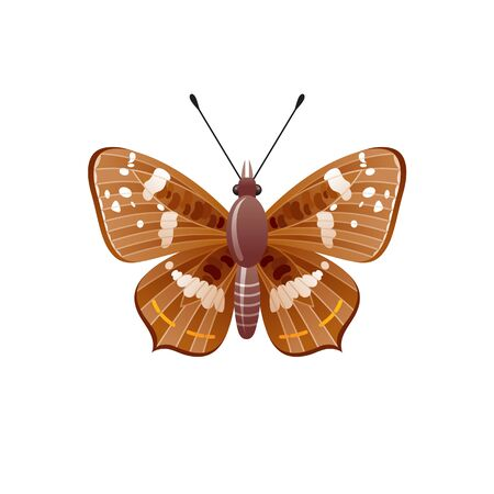 Butterfly icon. 3d realistic butterfly insect with beautiful brown color ornamental wings. Animal sign for logo design, poster, t-shirt print, banner. Vector illustration isolated on white background